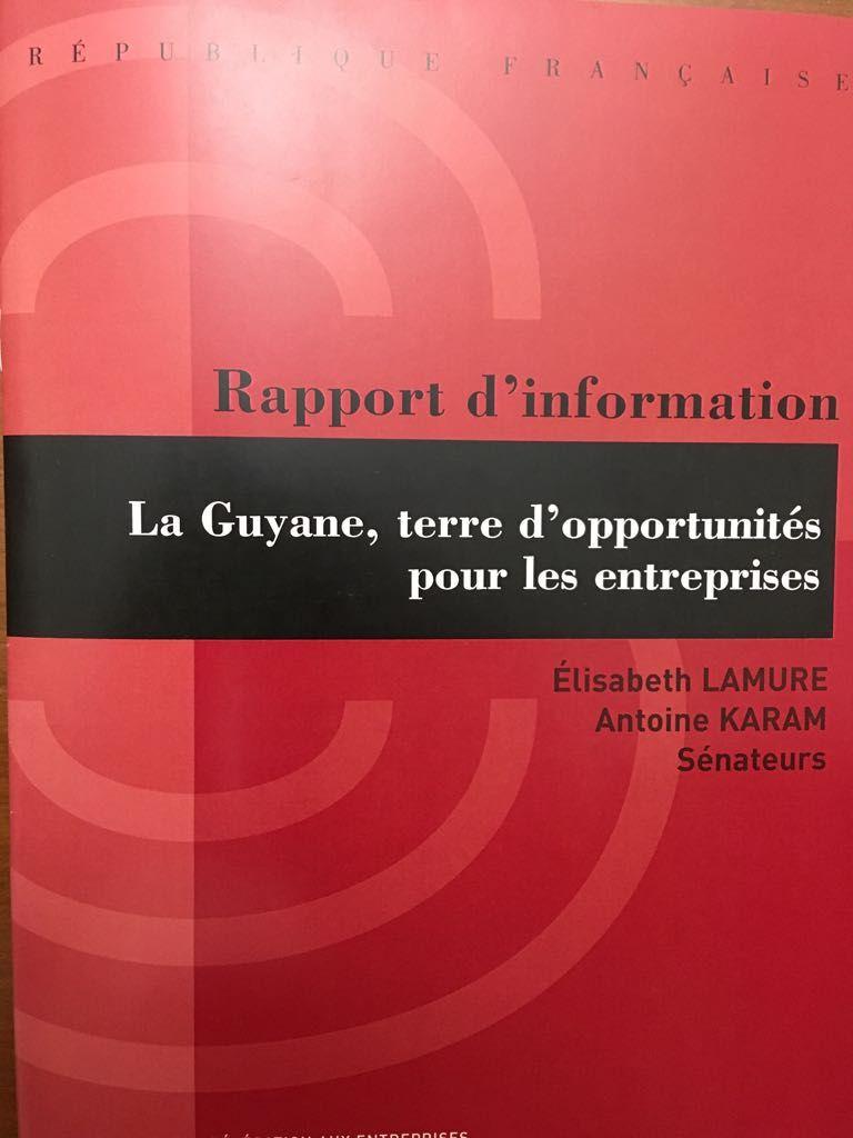 """Publication du rapport """" La Guyane, terre d'opportunités pour les entreprises"""""""